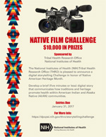 National Film Challenge flyer - Click to view the PDF
