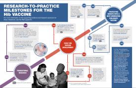 Research-to-Practice Milestones for the Hib Vaccine