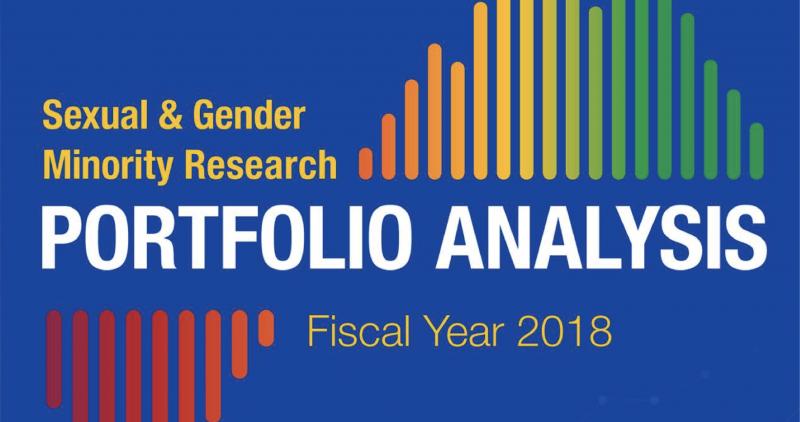 2018 SGM Portfolio Analysis Cover