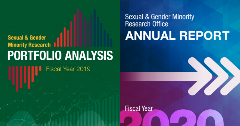FY 2020 Annual Report and FY 2019 Portfolio Analysis Release SGM